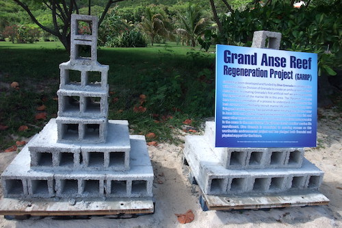 Pyramid Display for Marine Conservation Project GARRP