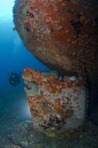 Grenada Dive Sites with Dive Grenada